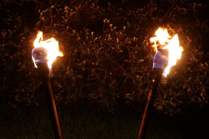 two fire torches illuminating near by foliage
