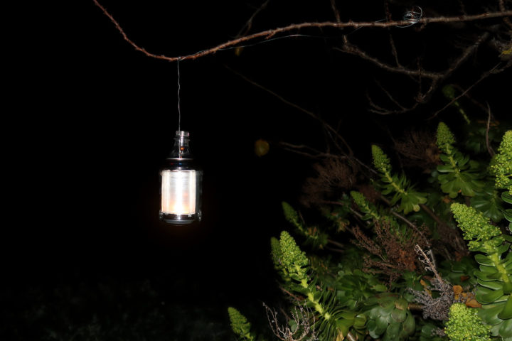 soda can lantern hanging from a tree branch and burning at night