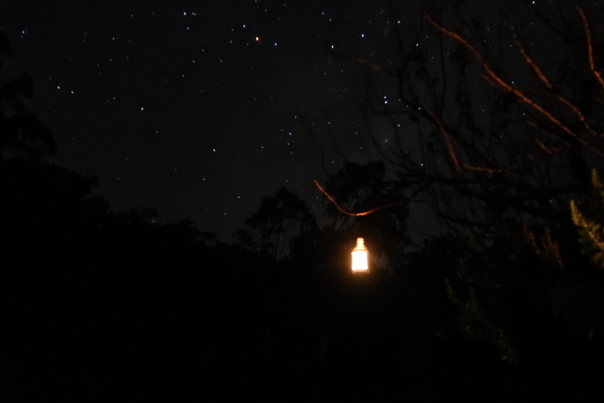 candle lantern glowing in a star lit night sky